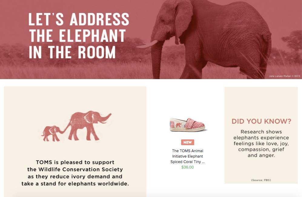 elephant toms